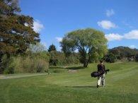 member playing golf